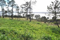 Land with 5805 m2 - Encosta da Lagoa, Foz do Arelho